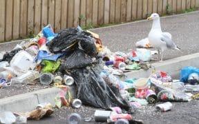 Litter waste